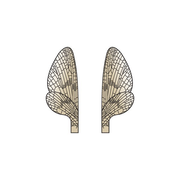 Realistic Mayfly Wings <br />Brown