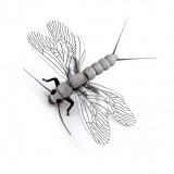 Stonefly Spent