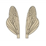 Wings of Spent Caddisfly and Stonefly <br /> Brown
