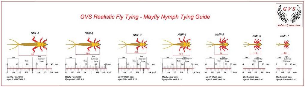 Mayfly Nymph